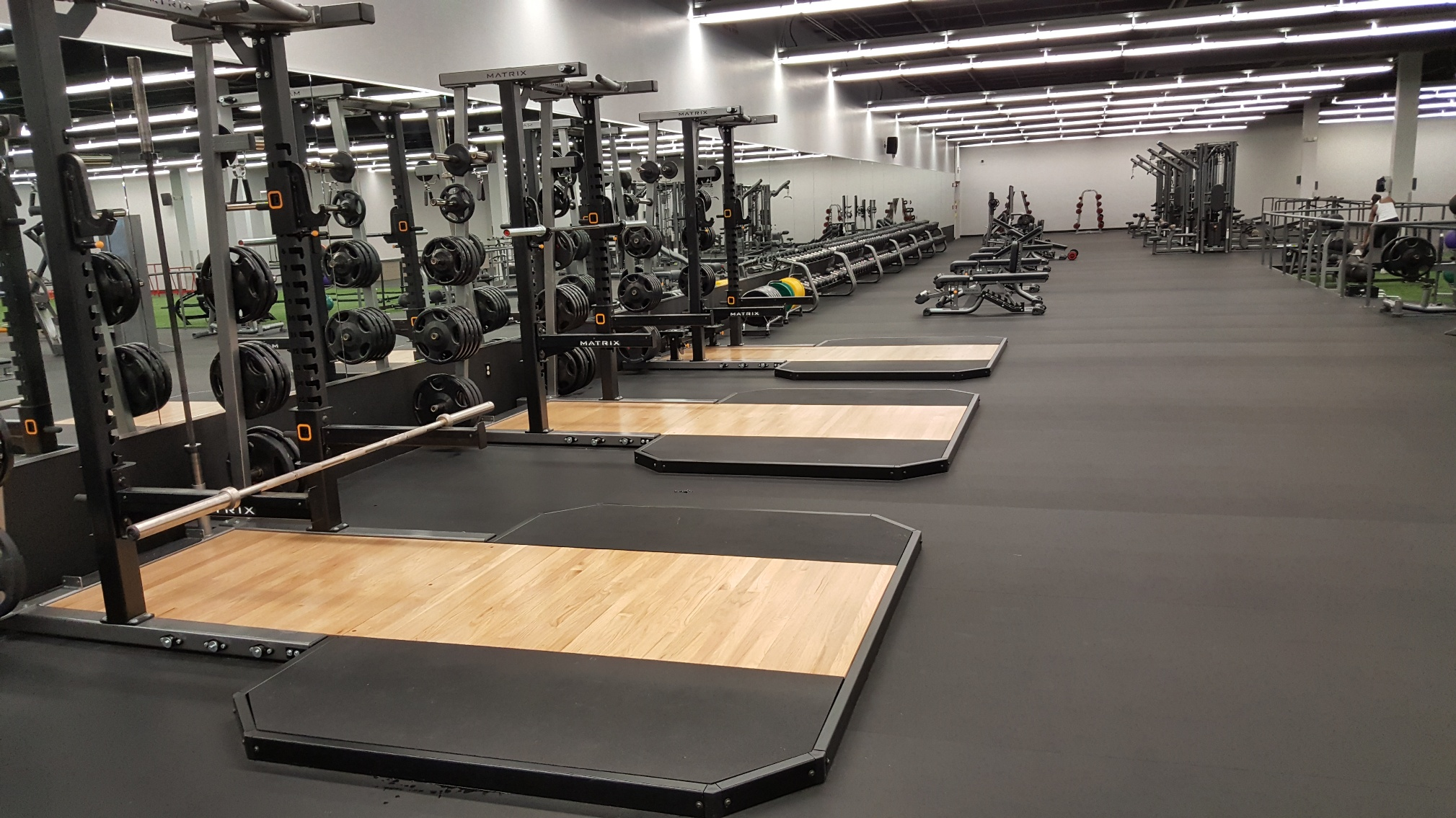 Fitness Centers In Tampa Fl | Powerhouse Gym Althetic Club